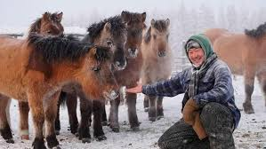 5 Amazing facts about life in Siberia