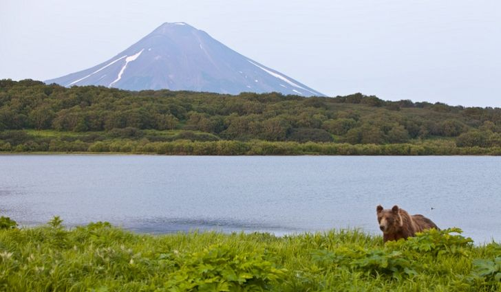 5 Interesting Facts about Kamchatka Peninsula
