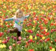 9 Places in Russia Where Spring Comes First